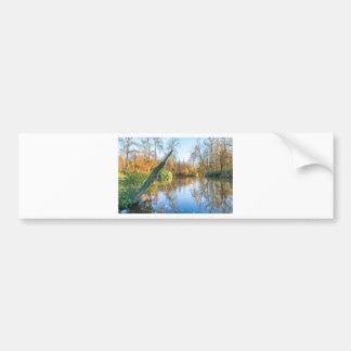 Forest autumn landscape with pond bumper sticker