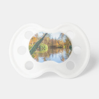 Forest autumn landscape with pond pacifier