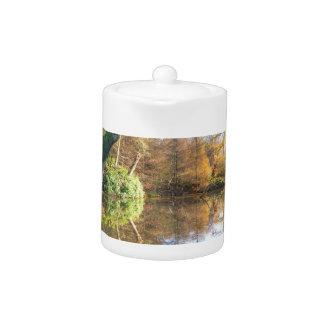 Forest autumn landscape with pond teapot