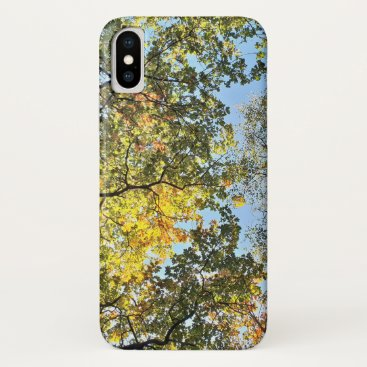 Forest Canopy in Autumn iPhone XS Case