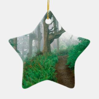 Forest Cape Lookout Park Ornaments