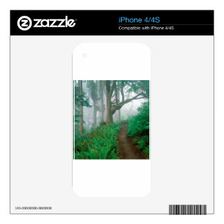 Forest Cape Lookout Park Skin For iPhone 4
