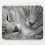 Forest cat mouse mat