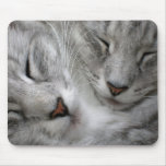 Forest cat mouse mat mouse pad