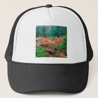 Forest Colorful Ferns In Autumn Acadia Maine Trucker Hat