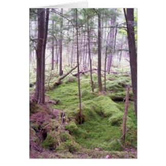 Forest Condolence Card