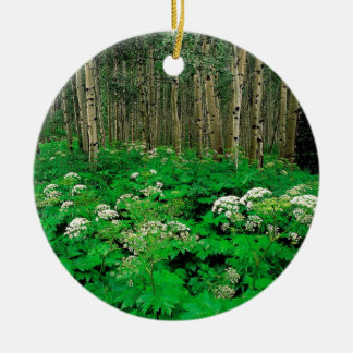 Forest Cow Parsnip Quaking Aspen Ceramic Ornament