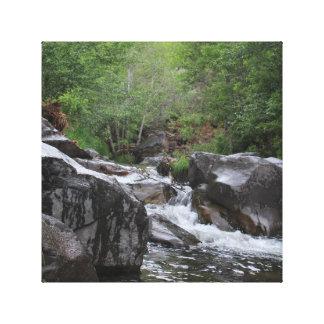 Forest Creek Canvas Art Canvas Print