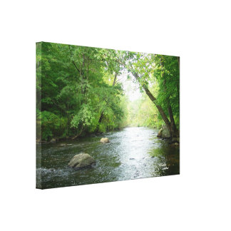 Forest creek Stretched Canvas Print