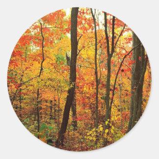 Forest Crimson Appalachian Mountains Classic Round Sticker