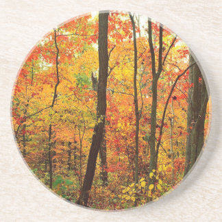 Forest Crimson Appalachian Mountains Drink Coasters