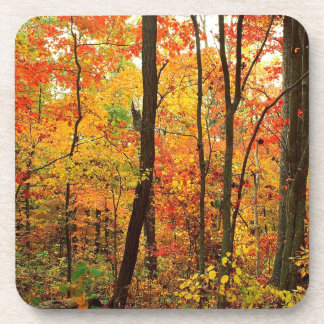 Forest Crimson Appalachian Mountains Beverage Coaster