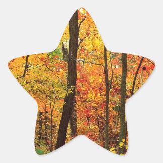 Forest Crimson Appalachian Mountains Sticker