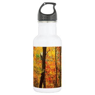 Forest Crimson Appalachian Mountains Water Bottle