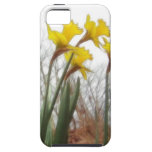 Forest Daffodils iPhone 5 Covers