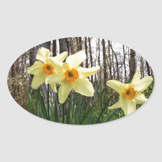 Forest Daffodils Oval Sticker