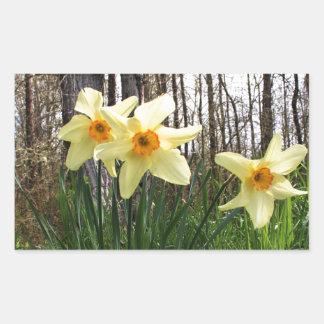 Forest Daffodils Rectangular Sticker
