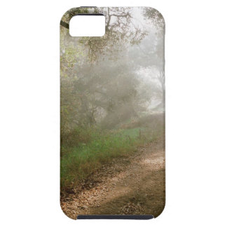 Forest Douglas Family Preserve Santa Barbara iPhone 5 Cases