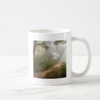 Forest Douglas Family Preserve Santa Barbara Classic White Coffee Mug