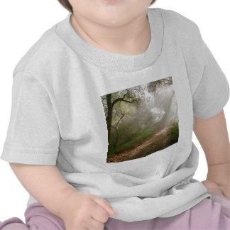 Forest Douglas Family Preserve Santa Barbara T-shirt