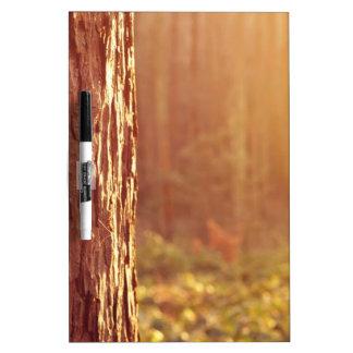 Forest Dream Dry-Erase Board