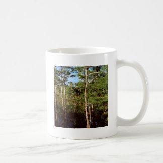 Forest Dwarf Cypress Everglades Florida Coffee Mugs
