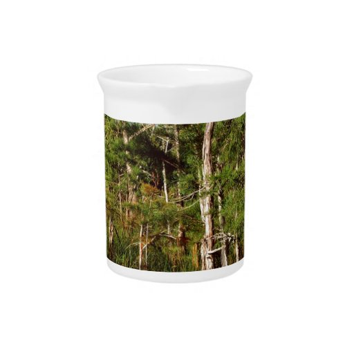 Forest Dwarf Cypress Everglades Florida Beverage Pitchers