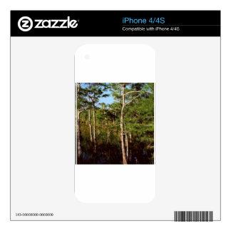 Forest Dwarf Cypress Everglades Florida iPhone 4S Decal