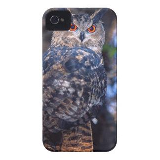 Forest Eagle Owl, Bubo bubo, Native to Eurasia 2 iPhone 4 Case