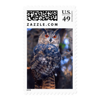 Forest Eagle Owl, Bubo bubo, Native to Eurasia 2 Postage Stamps