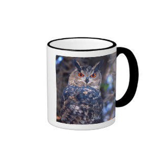 Forest Eagle Owl, Bubo bubo, Native to Eurasia 2 Ringer Mug
