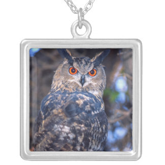 Forest Eagle Owl, Bubo bubo, Native to Eurasia 2 Silver Plated Necklace