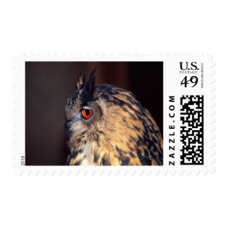 Forest Eagle Owl, Bubo bubo, Native to Eurasia Stamps