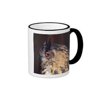 Forest Eagle Owl, Bubo bubo, Native to Eurasia Ringer Mug