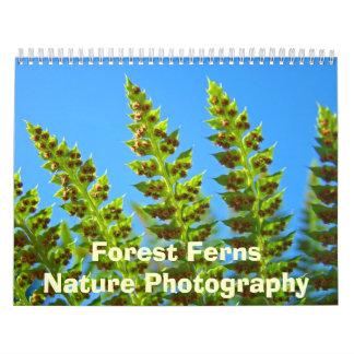 Forest Ferns Nature Photography Calendar Green