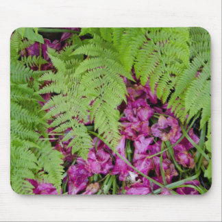 Forest ferns with pink flower petals on ground mouse pad