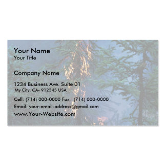 Forest Fire Double-Sided Standard Business Cards (Pack Of 100)