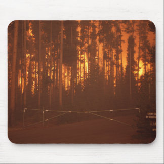 Forest Fire Mouse Pad