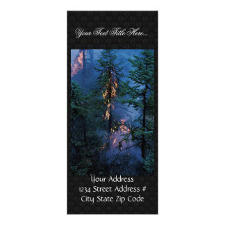 Forest Fire Personalized Rack Card