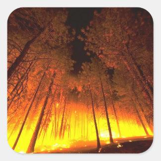Forest Fire Square Sticker