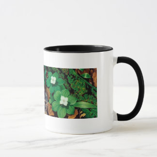Forest Floor/Baby Rabbit mug