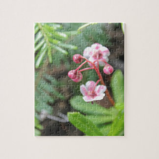 Forest Floor Flower Jigsaw Puzzle