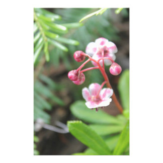 Forest Floor Flower Stationery