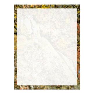 Forest floor letterhead