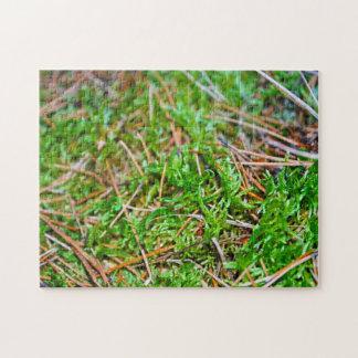 Forest Floor - Nehalem Bay State Park Jigsaw Puzzles