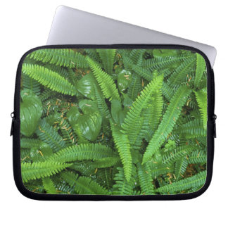Forest Floor, Quinault Rain Forest, Olympic NP, Laptop Sleeve
