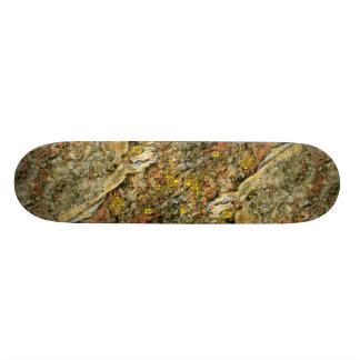 Forest floor skate board decks