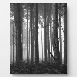 FOREST FOG 14 PLAQUE