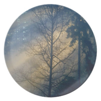 Forest Fog in Sunlight 3 Nature-lovers Plate