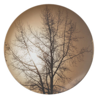 Forest Fog in Sunlight Nature-lovers Plate